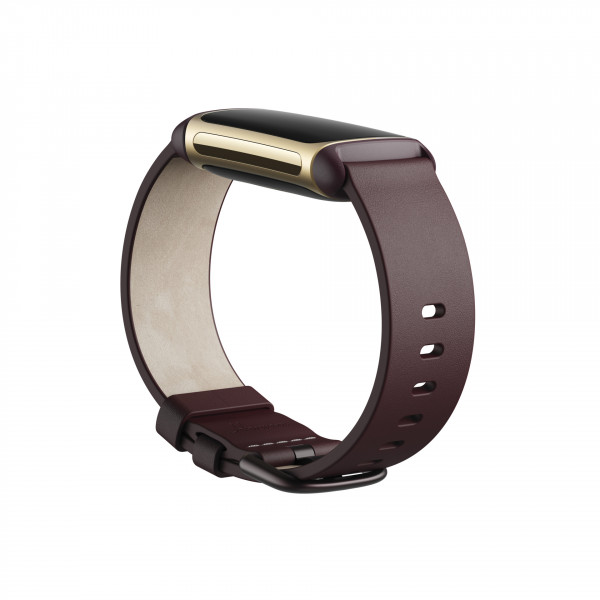 Charge 5, Leather Band,Plum,Large