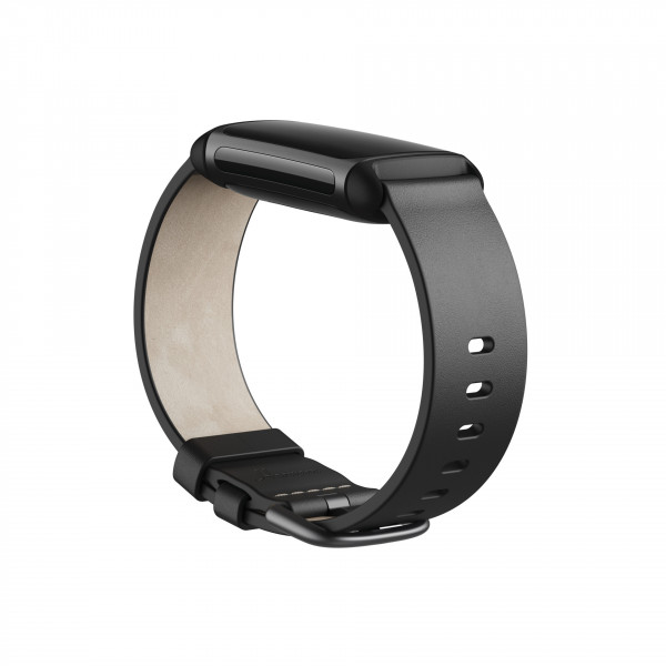 Charge 5, Leather Band,Black,Large